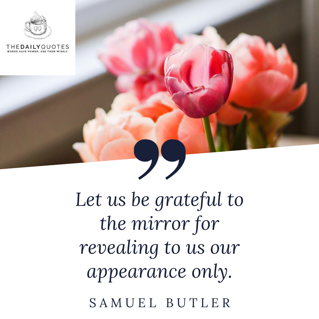 Let us be grateful to the mirror for revealing to us our appearance only.