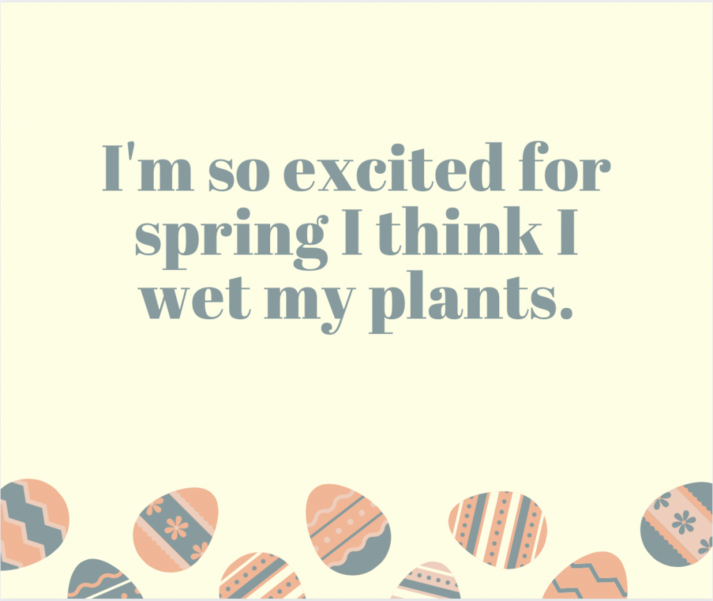 I'm so excited for spring I think I wet my plants.