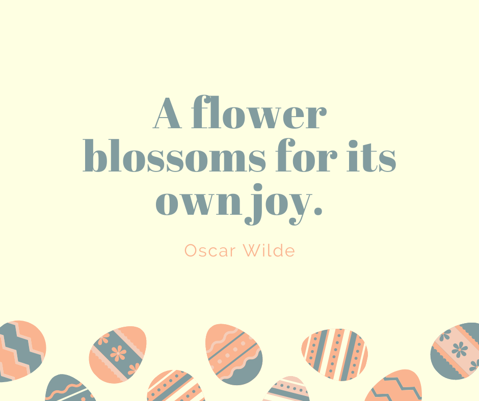 A flower blossoms for its own joy.